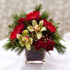 Christmas is a time for giving - give beautiful flowers from Floral Designs by Lee