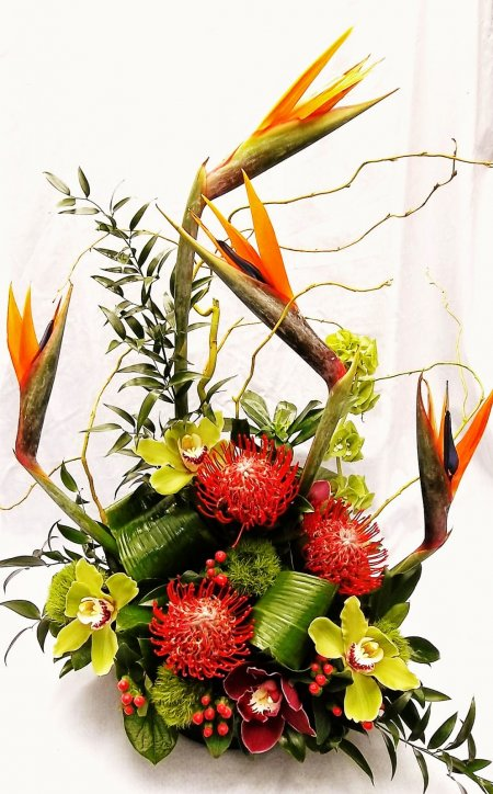 Paradise (orchids protea and birds of paradise)